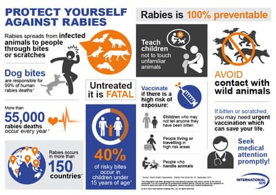 rabies infographic w400
